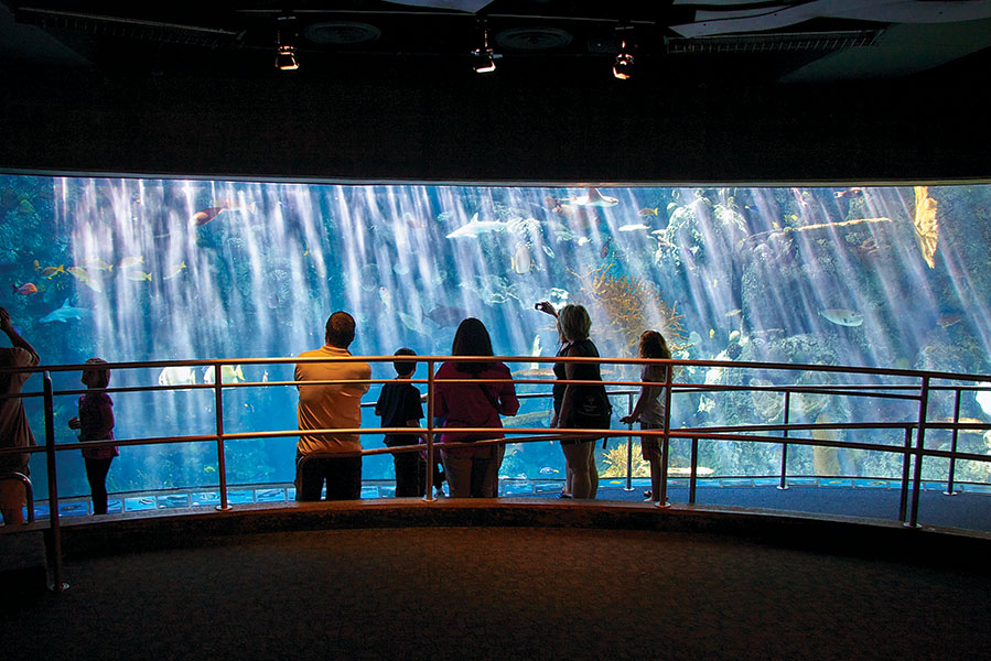 large exhibit window with people in front