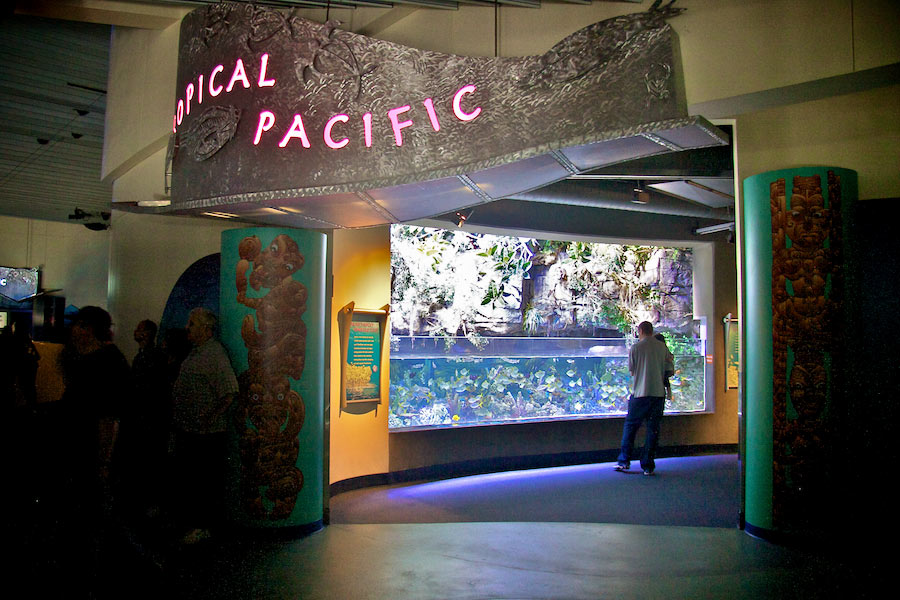 Tropical Pacific Gallery entrance